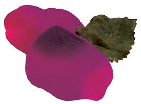 silk%20beauty New Products: Premium Silk Rose Petals